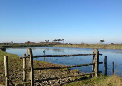 Marais de Lyarne